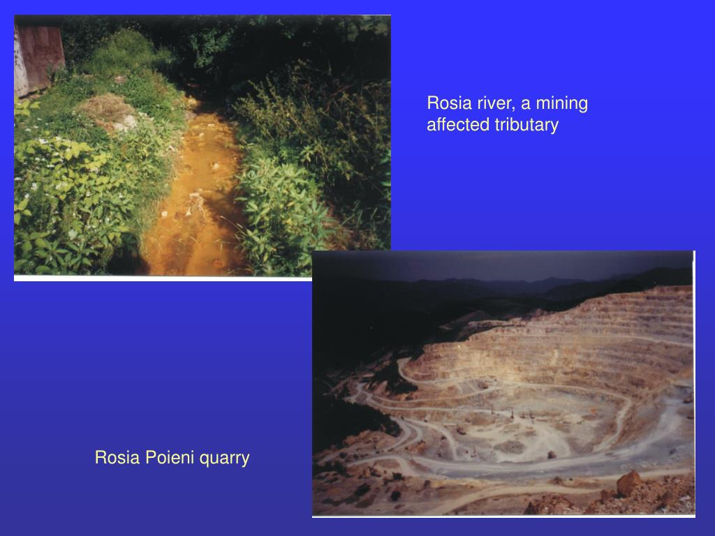 Rosia river, a mining affected tributary