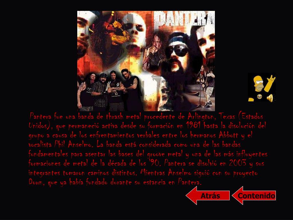 Pantera fue una banda de thrash metal procedente de Arlington, Texas (Estados Unidos), que permaneció activa desde su formación en 1981 hasta la disolución del grupo a causa de los enfrentamientos verbales entre los hermanos Abbott y el vocalista Phil Anselmo. La banda está considerada como una de las bandas fundamentales para asentar las bases del groove metal y una de las más influyentes formaciones de metal de la década de los '90. Pantera se disolvió en 2003 y sus integrantes tomaron caminos distintos. Mientras Anselmo siguió con su proyecto Down, que ya había fundado durante su estancia en Pantera.