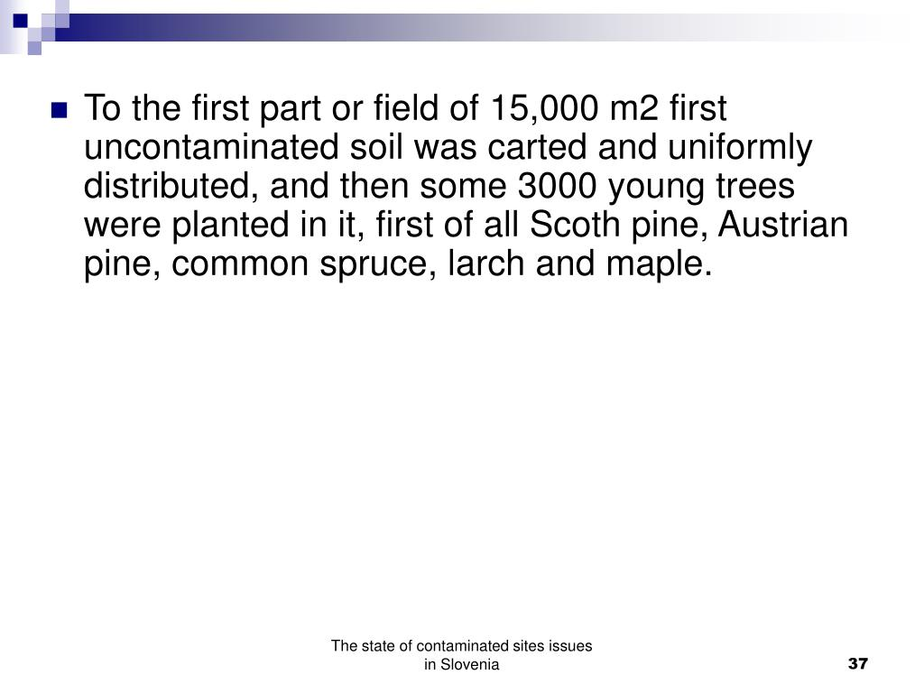 To the first part or field of 15,000 m2 first uncontaminated soil was carted and uniformly distributed, and then some 3000 young trees were planted in it, first of all Scoth pine, Austrian pine, common spruce, larch and maple.
