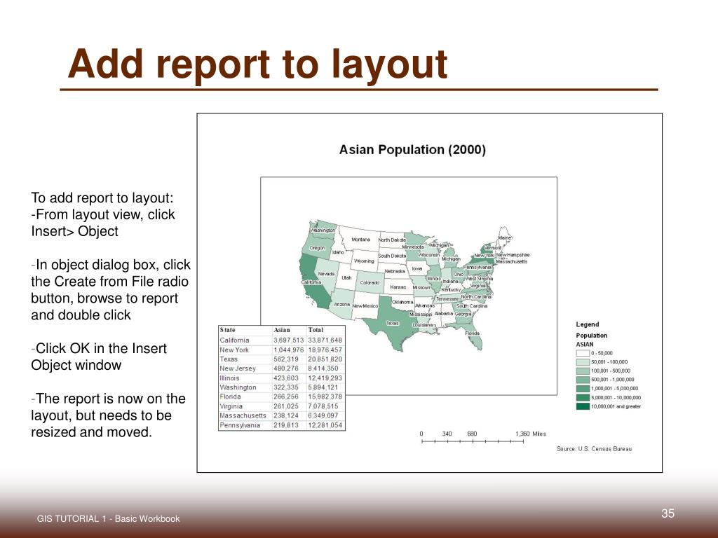 Add report to layout