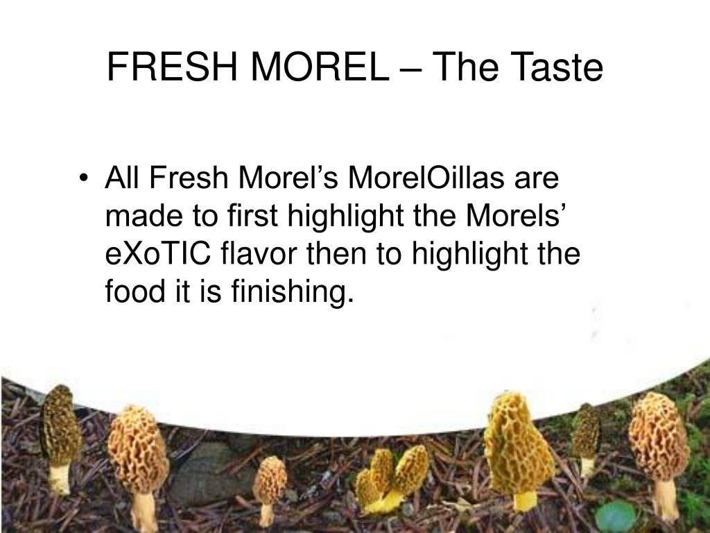 FRESH MOREL – The Taste