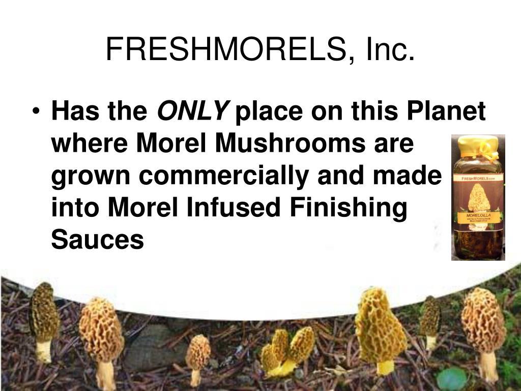 FRESHMORELS, Inc.