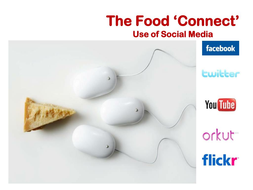 The Food 'Connect'