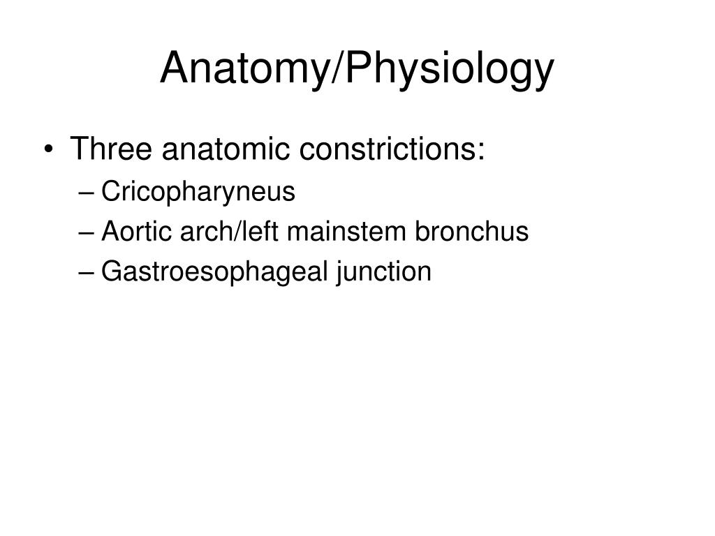 Anatomy/Physiology