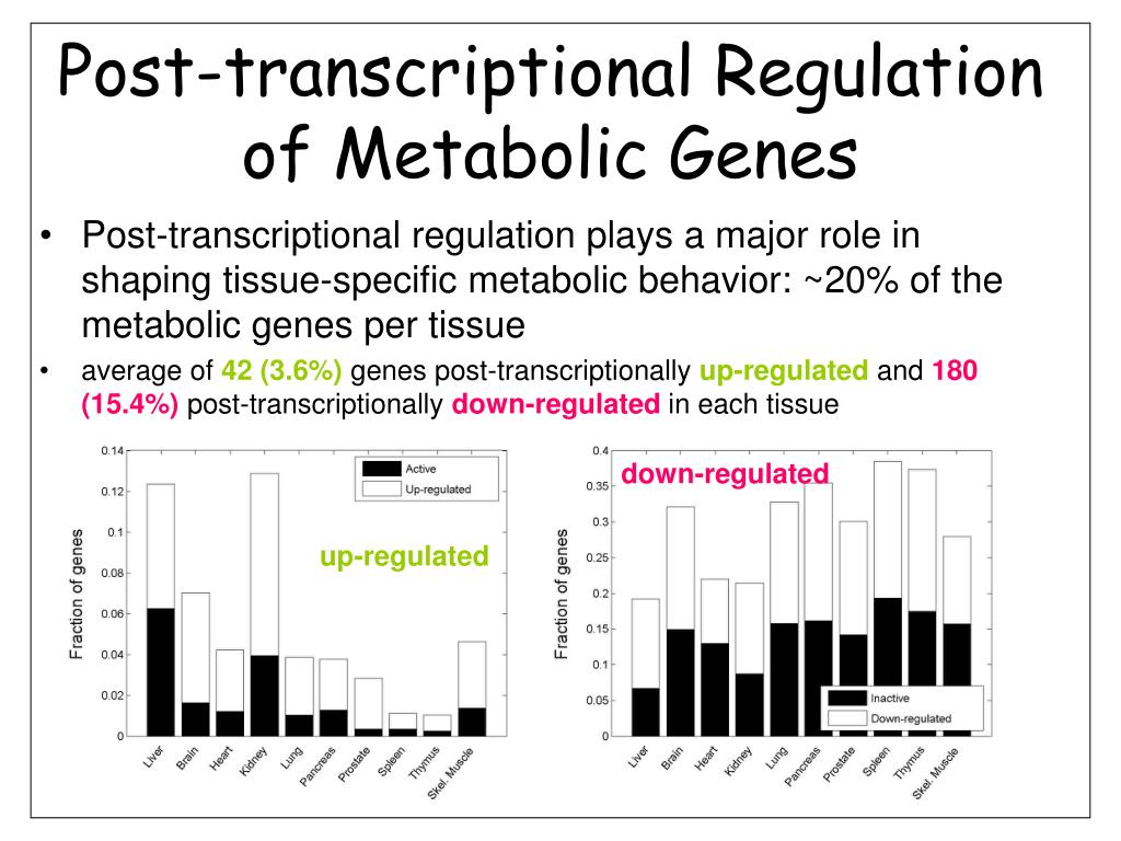 Post-transcriptional Regulation of Metabolic Genes