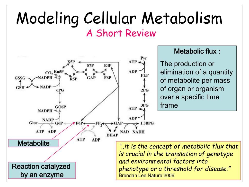 Metabolite