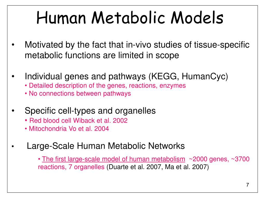 Human Metabolic Models