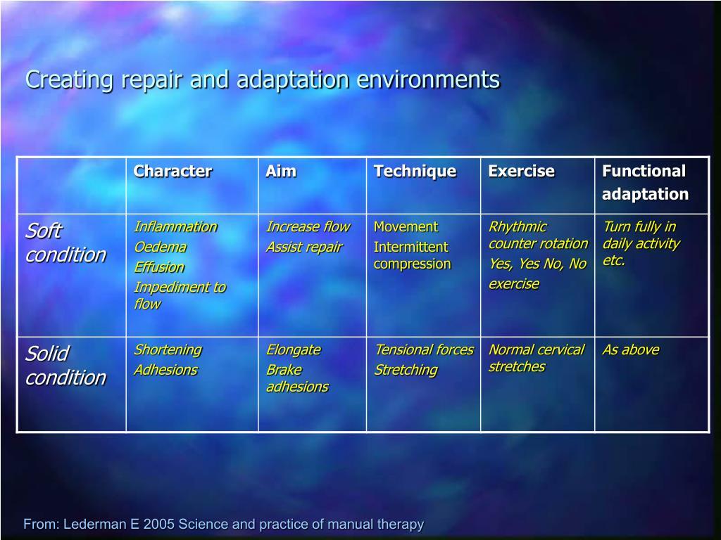 Creating repair and adaptation environments