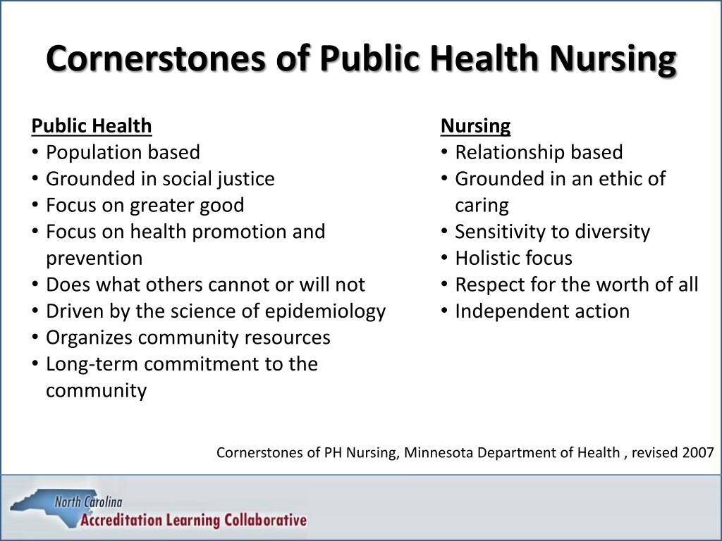 Cornerstones of Public Health Nursing
