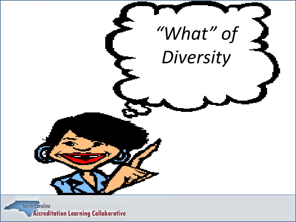 """What"" of Diversity"