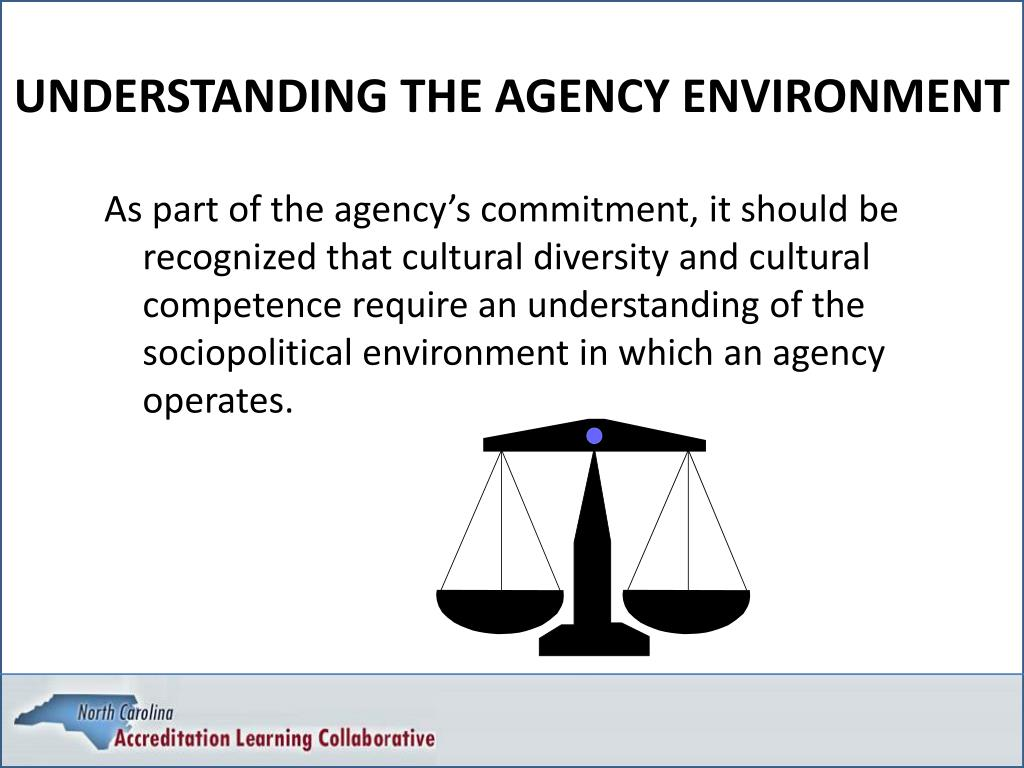 UNDERSTANDING THE AGENCY ENVIRONMENT