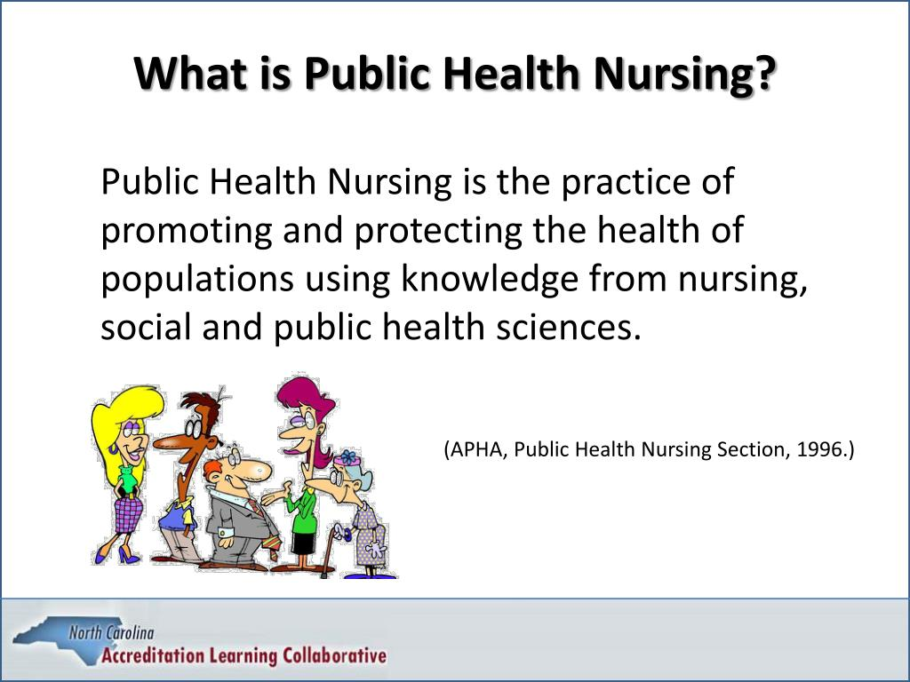What is Public Health Nursing?