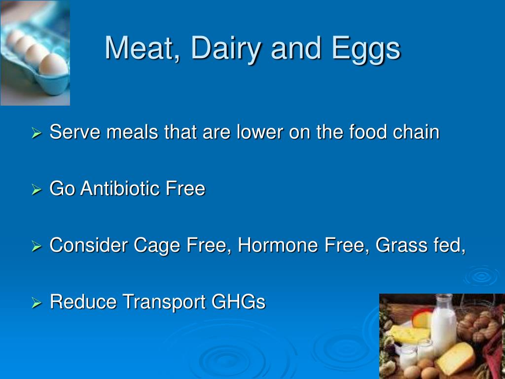 Meat, Dairy and Eggs