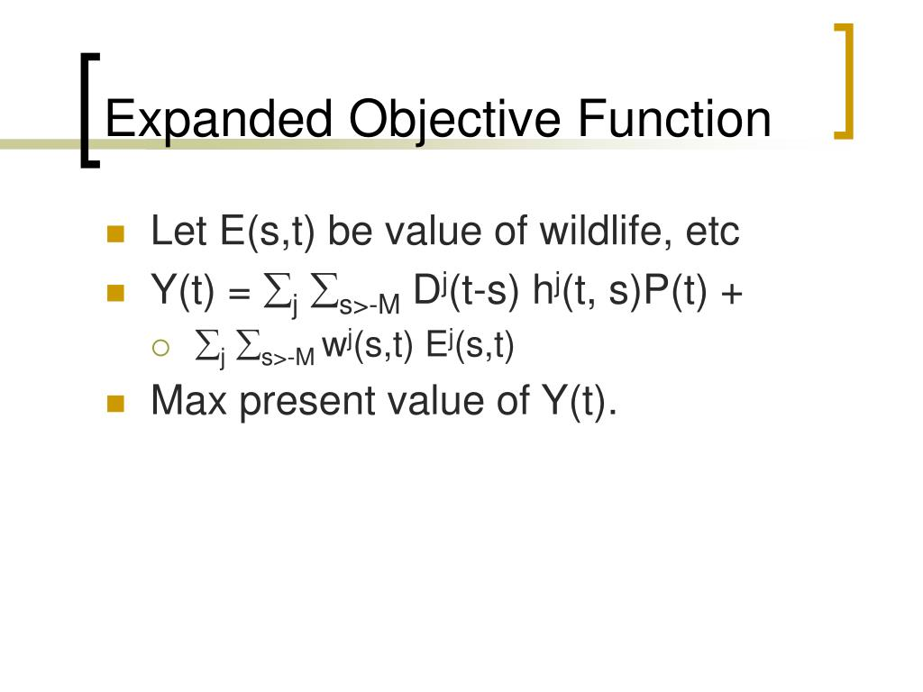 Expanded Objective Function