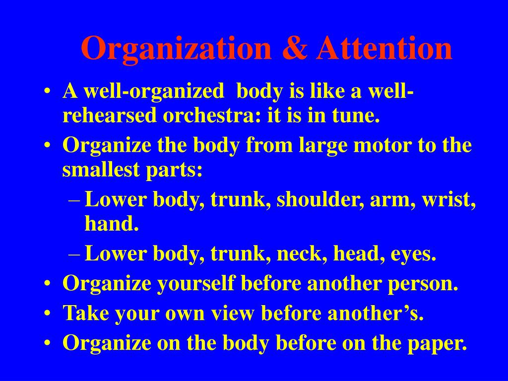 Organization & Attention
