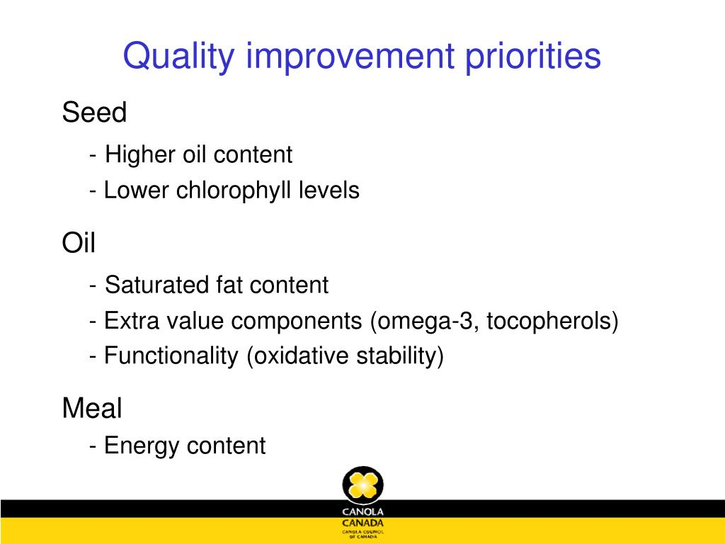 Quality improvement priorities