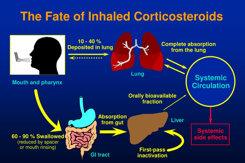 The Fate of Inhaled Corticosteroids