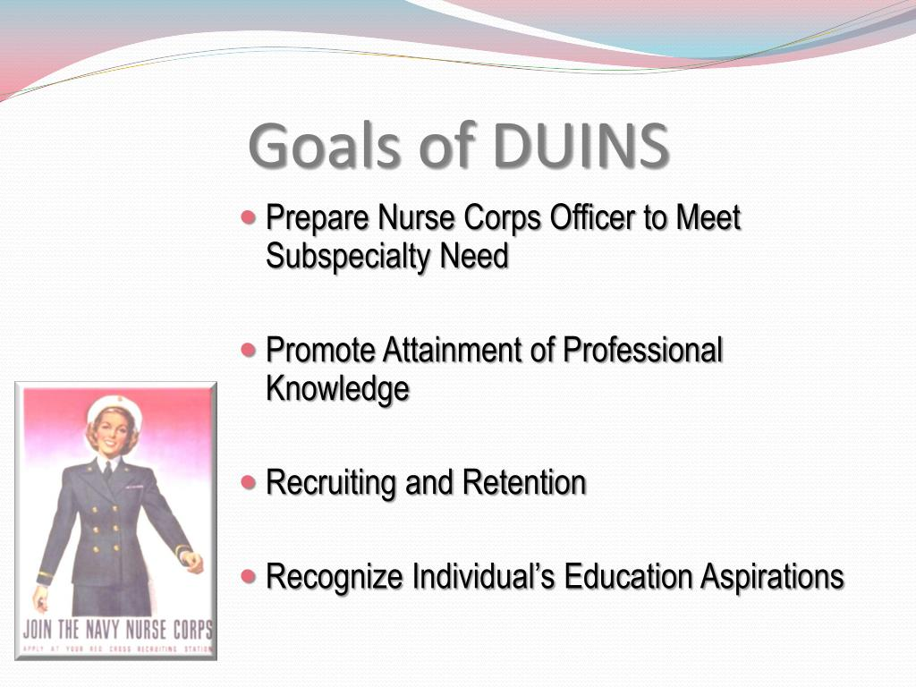 Goals of DUINS