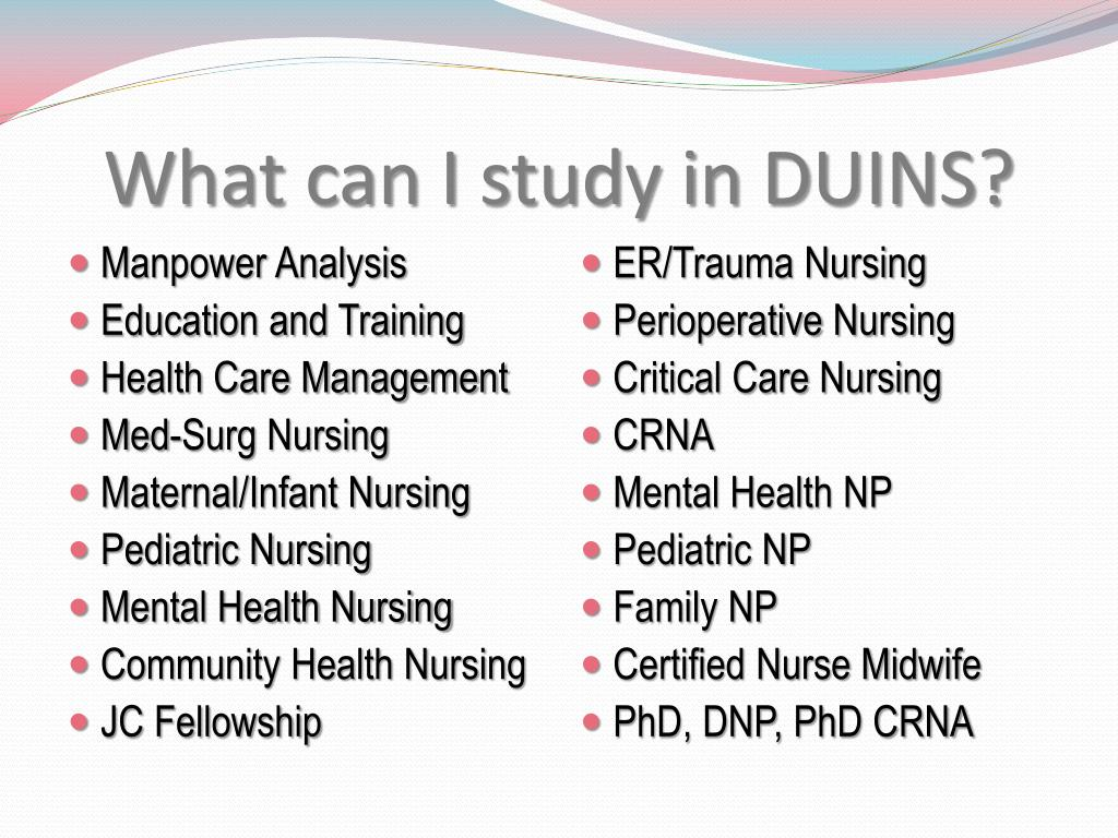 What can I study in DUINS?