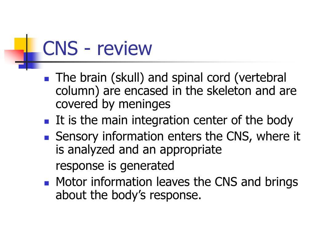 CNS - review