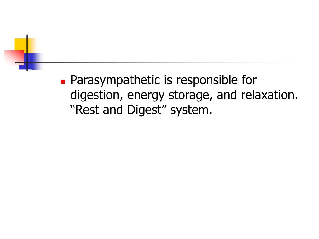 "Parasympathetic is responsible for digestion, energy storage, and relaxation. ""Rest and Digest"" system."
