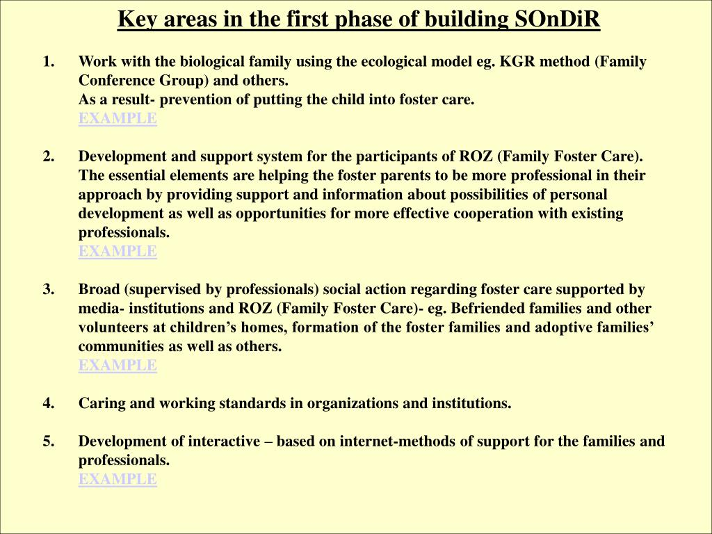 Key areas in the first phase of building SOnDiR