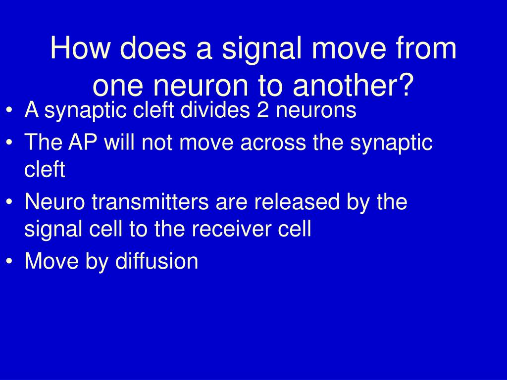 How does a signal move from one neuron to another?