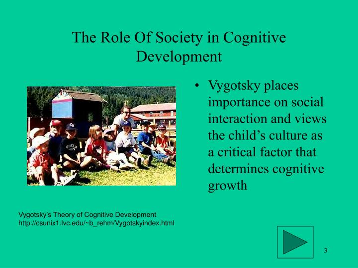 The role of society in cognitive development l.jpg