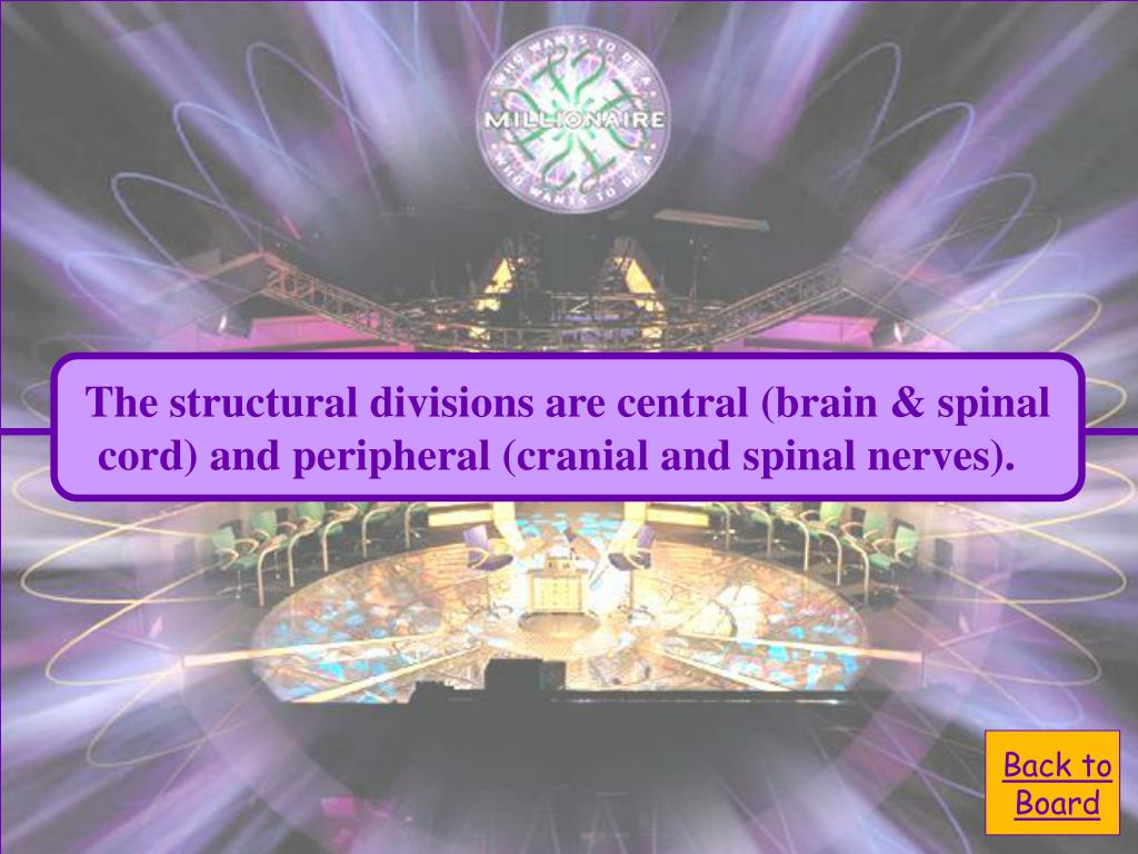 The structural divisions are central (brain & spinal
