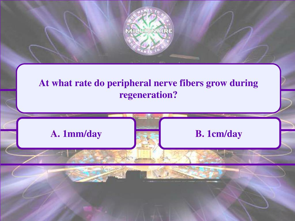 At what rate do peripheral nerve fibers grow during regeneration?