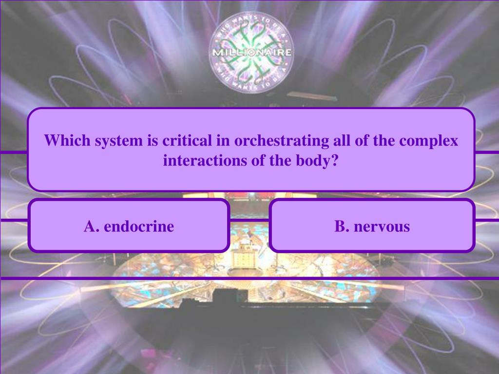 Which system is critical in orchestrating all of the complex interactions of the body?