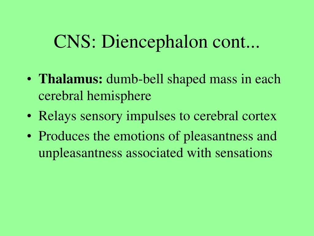 CNS: Diencephalon cont...