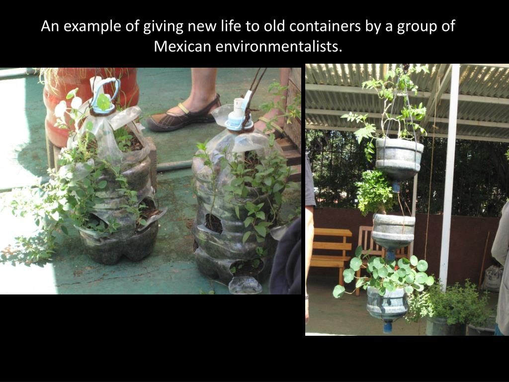 An example of giving new life to old containers by a group of Mexican environmentalists.
