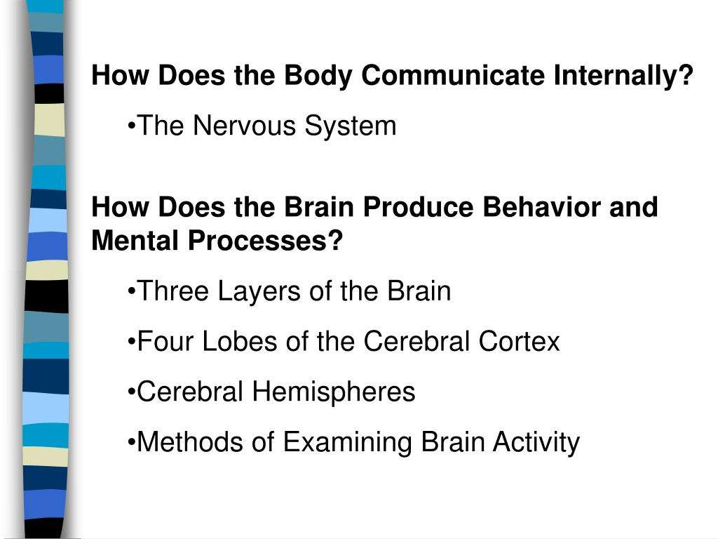How Does the Body Communicate Internally?