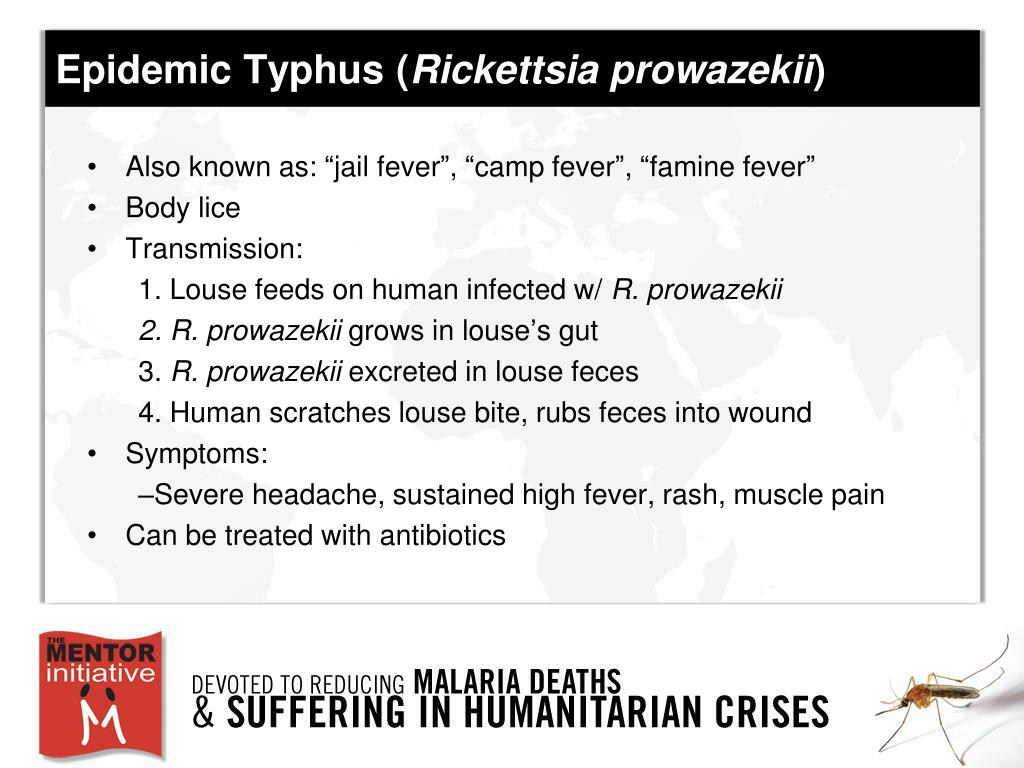 Epidemic Typhus (