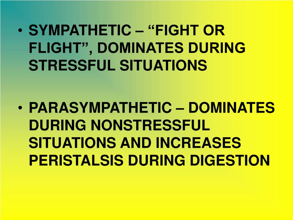 "SYMPATHETIC – ""FIGHT OR FLIGHT"", DOMINATES DURING STRESSFUL SITUATIONS"