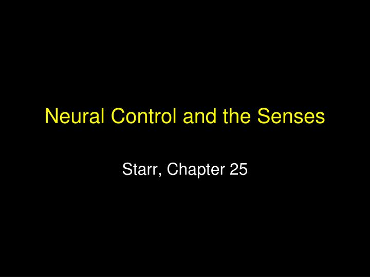 Neural control and the senses l.jpg