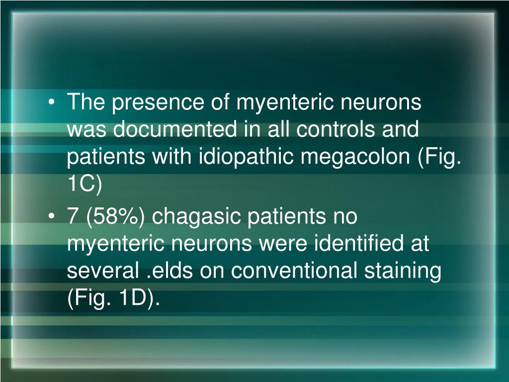 The presence of myenteric neurons was documented in all controls and patients with idiopathic megacolon (Fig. 1C)