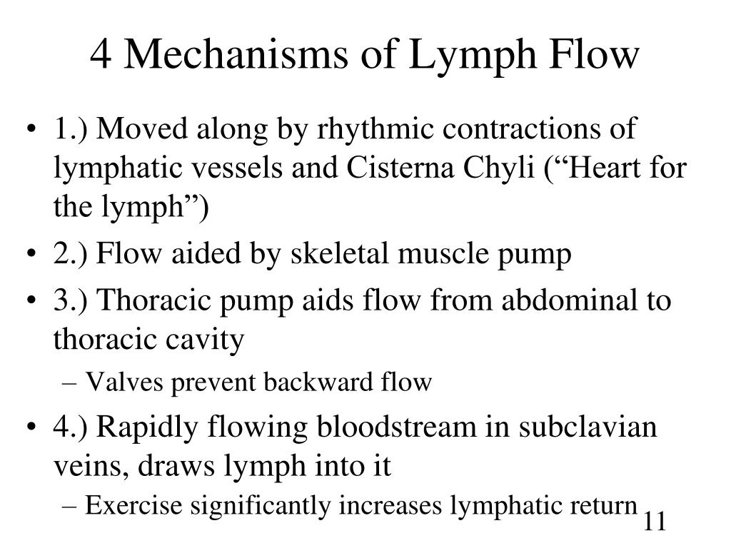 4 Mechanisms of Lymph Flow