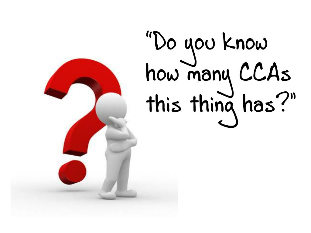 """""""Do you know how many CCAs this thing has?"""""""