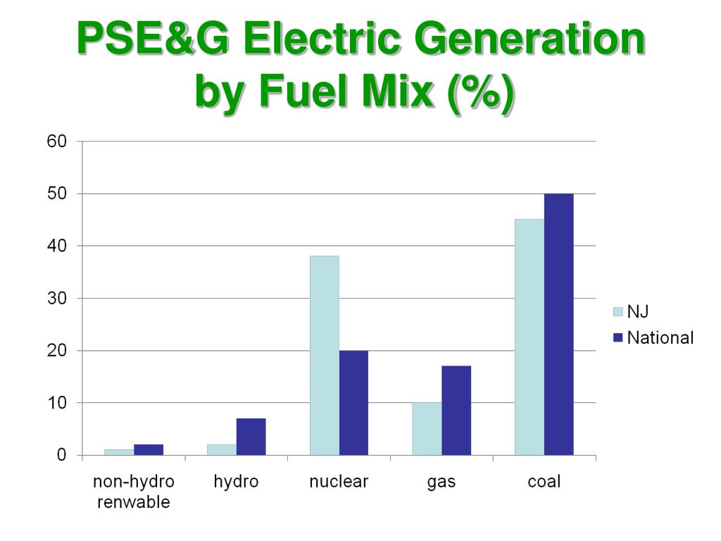 PSE&G Electric Generation