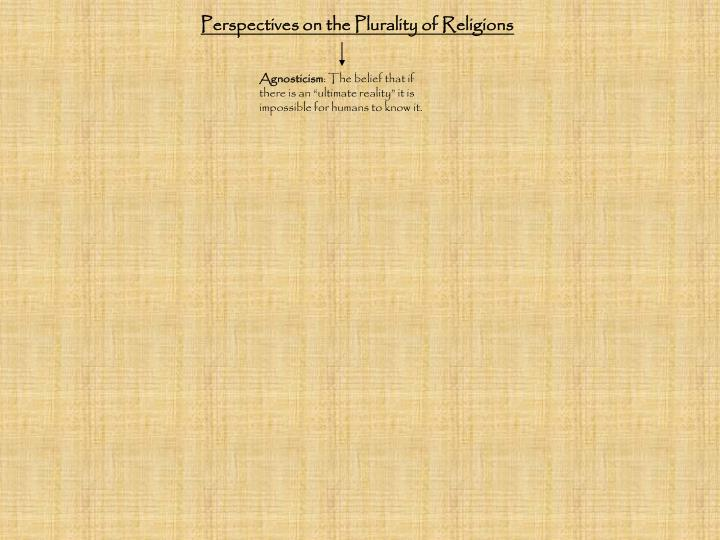 Perspectives on the Plurality of Religions