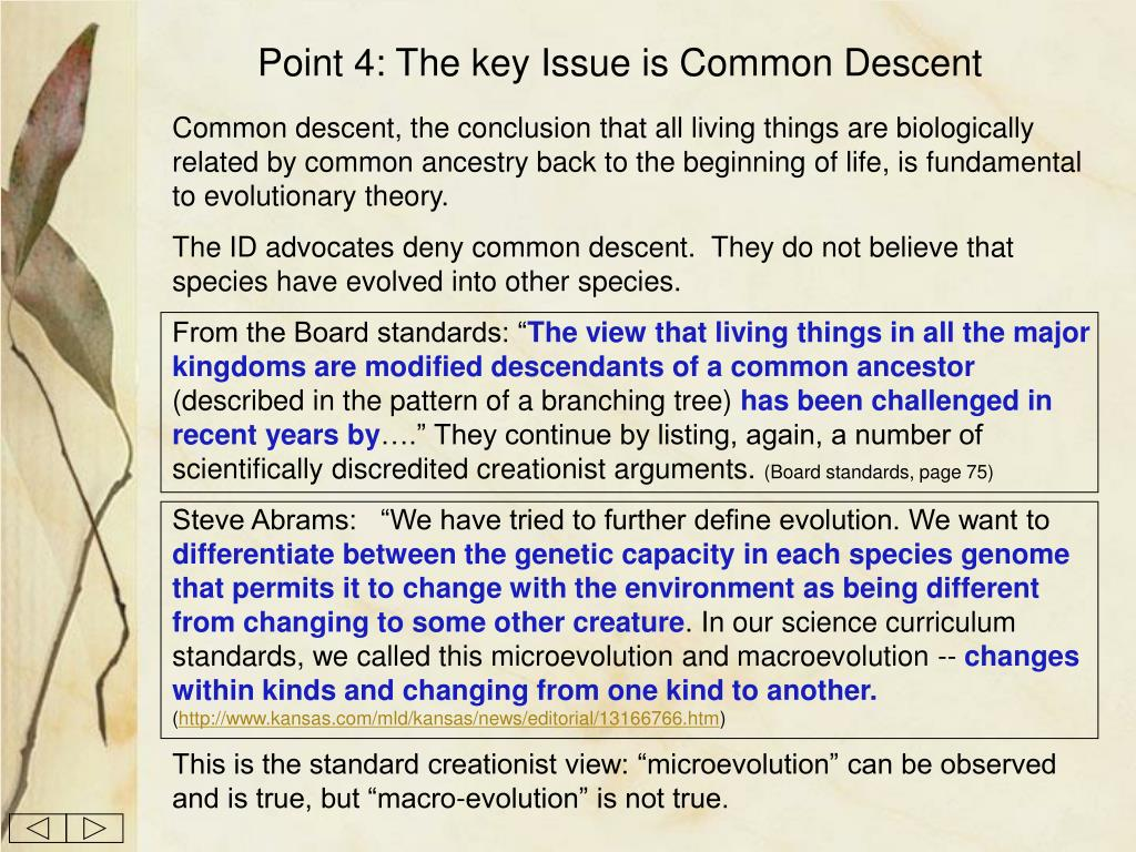 Point 4: The key Issue is Common Descent