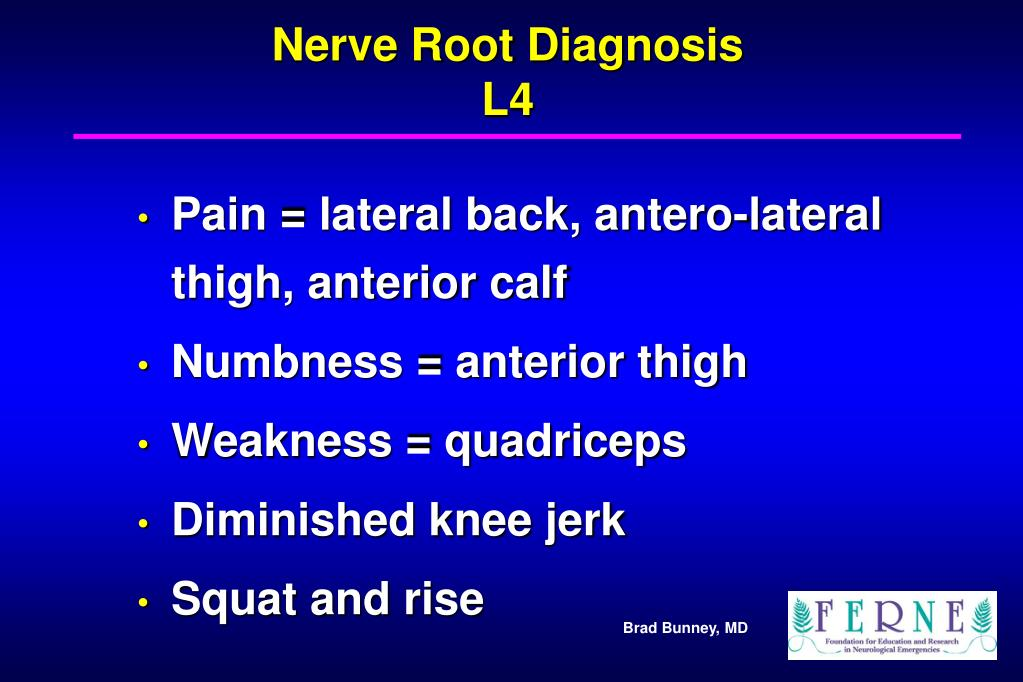 Nerve Root Diagnosis