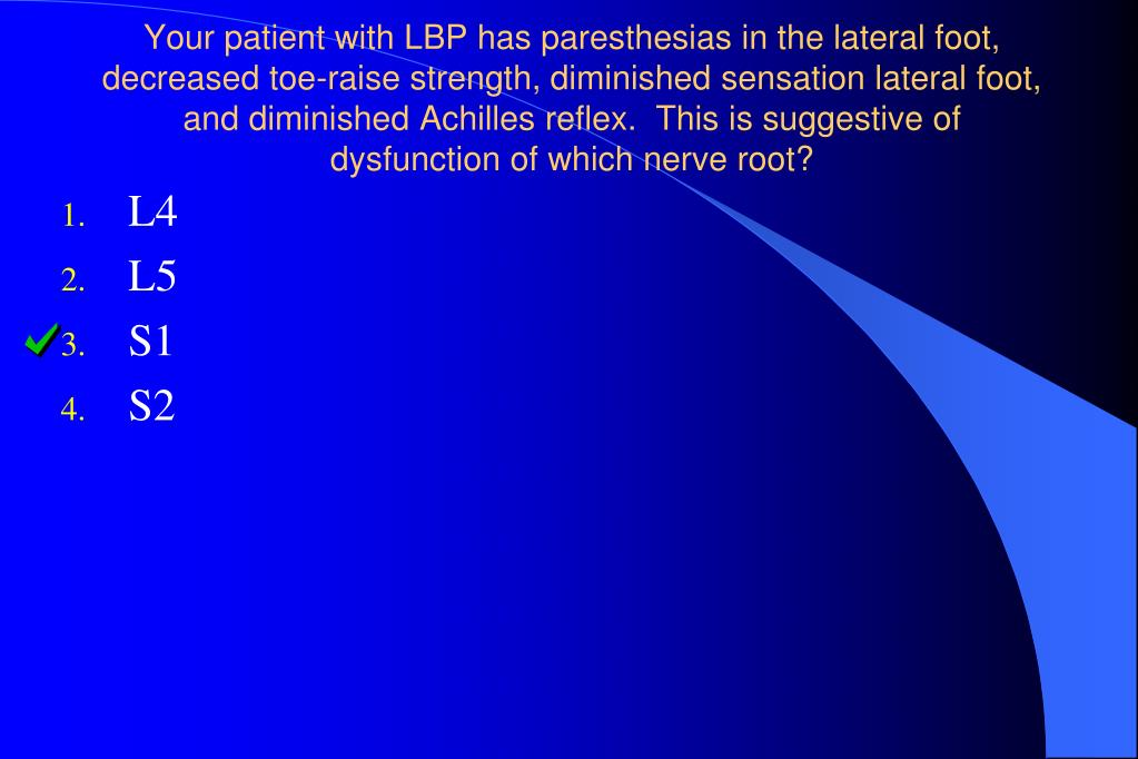 Your patient with LBP has paresthesias in the lateral foot, decreased toe-raise strength, diminished sensation lateral foot, and diminished Achilles reflex.  This is suggestive of dysfunction of which nerve root?