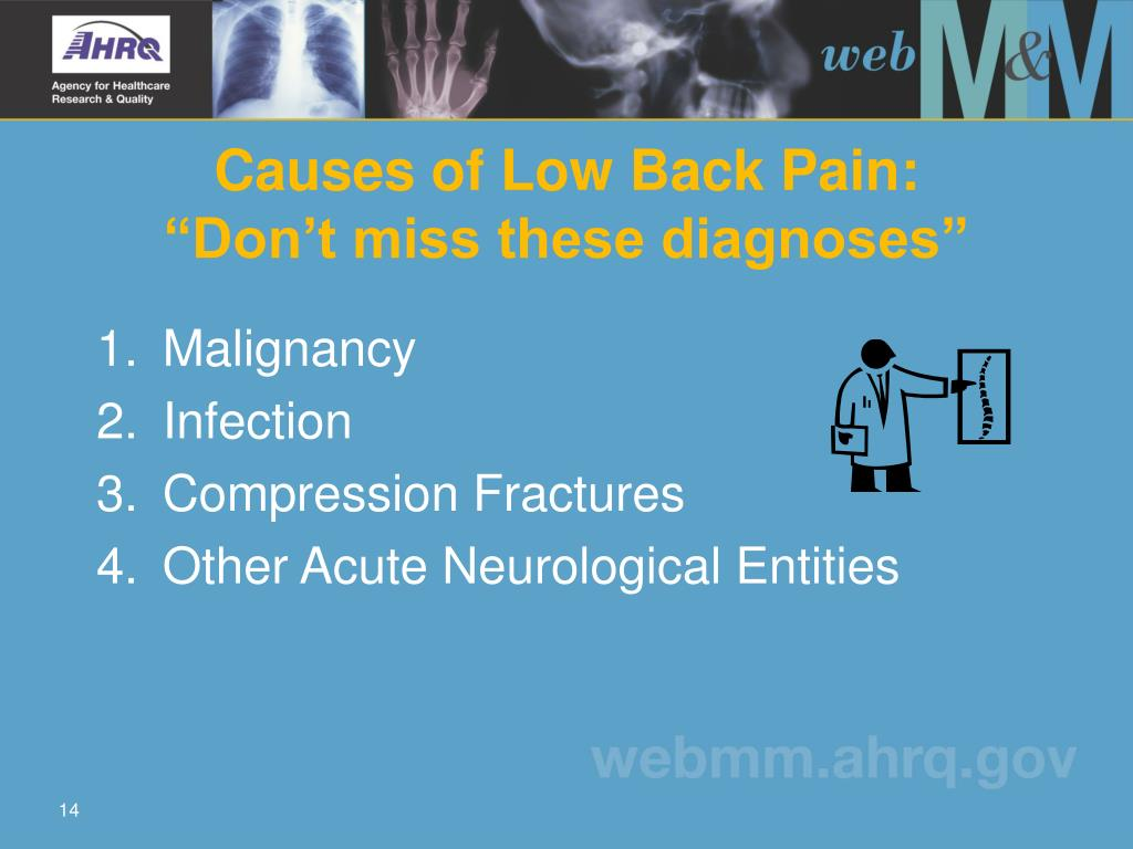 Causes of Low Back Pain: