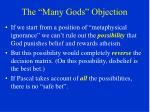 the many gods objection17