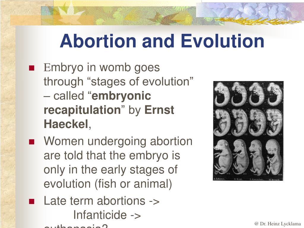 Abortion and Evolution
