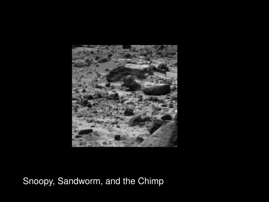 Snoopy, Sandworm, and the Chimp