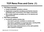 tcp reno pros and cons 1